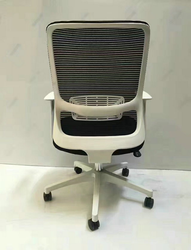 Modern Plastic Frame Mesh Office Chair With Lumbar Support
